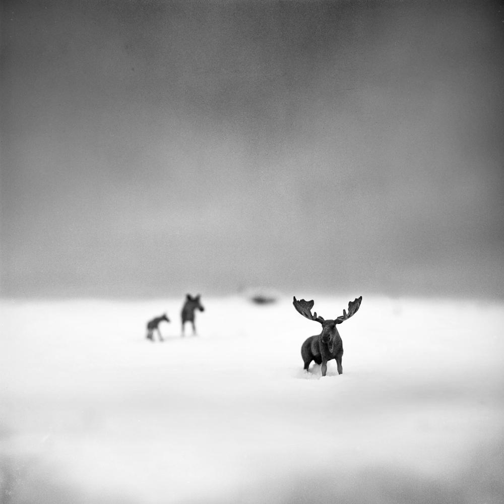Andrea Buzzichelli - Imaginary World. Fine Art: Landscape - 1st Place, Gold Star Award.
