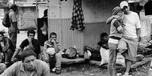 Michelle Frankfurter: Destino