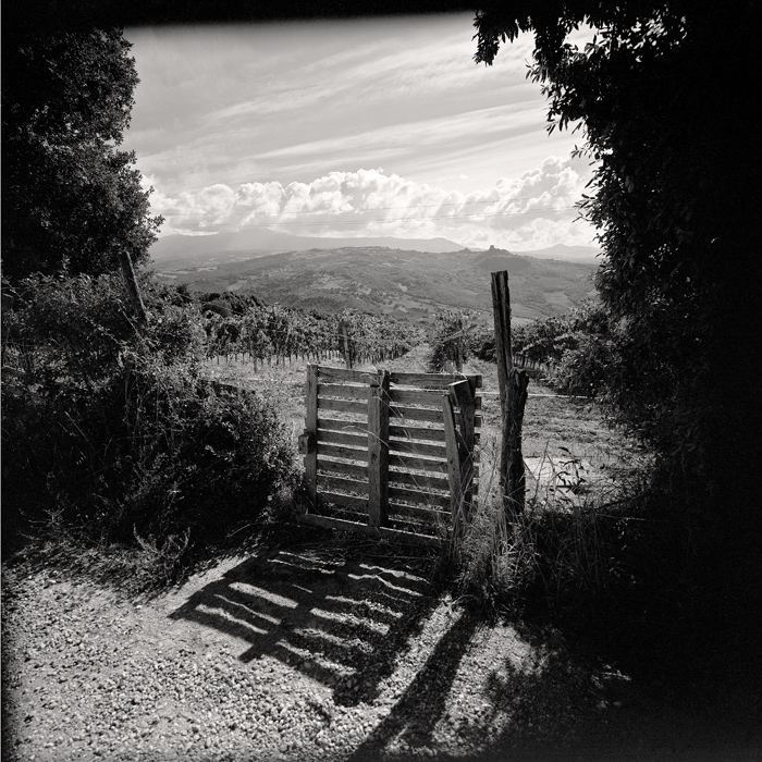 © Dominique Bollinger Tuscany 1- 2010