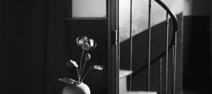 Biography: Andre Kertesz