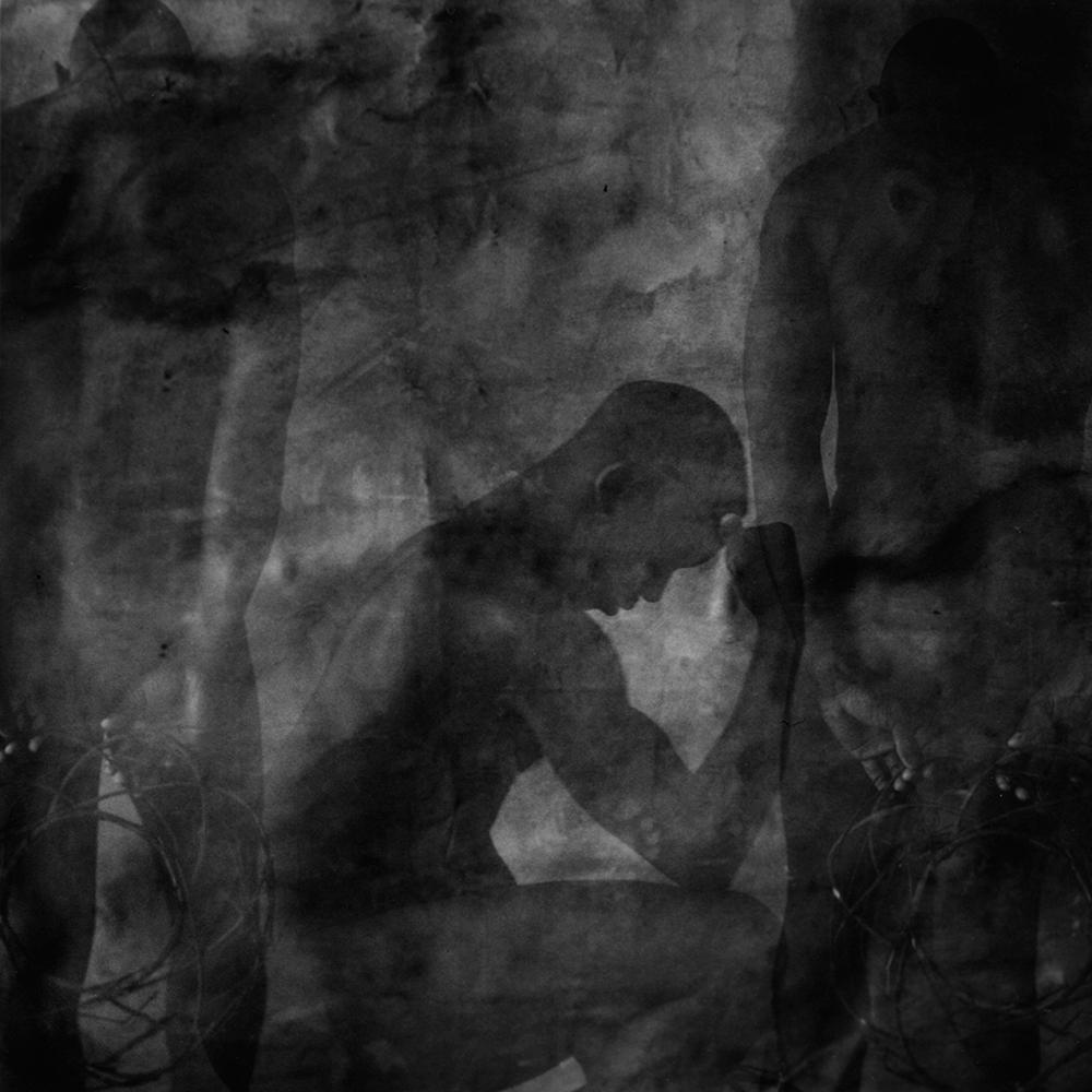 © Mark Hamilton