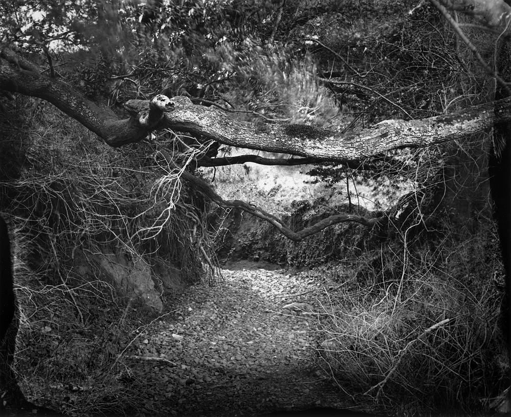 © Ben Nixon Dry Creek