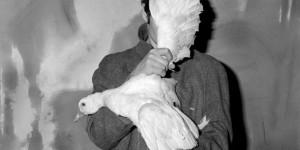 Roger Ballen: Asylum of The Birds