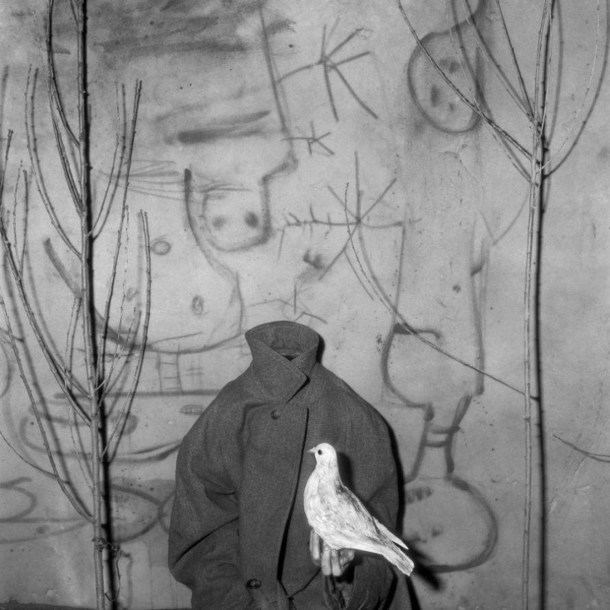 Roger-Ballen-Asylum-of-The Birds-03