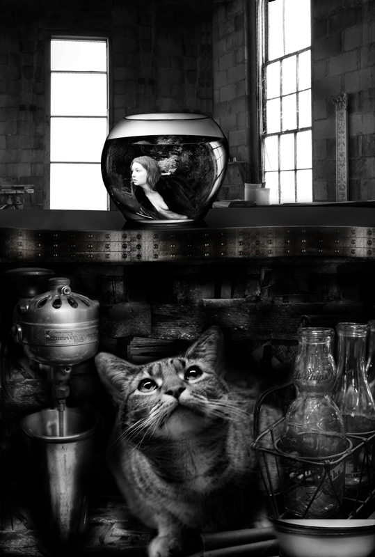 Object of Desire © Frank Barnett – Honorable Mention in Photomanipulation, Professional