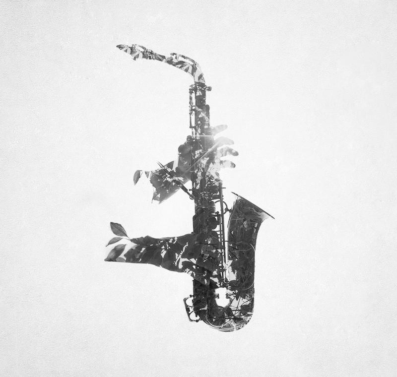 Vital Saxophone © Efrain Cruz – Honorable Mention in Photomanipulation, Professional
