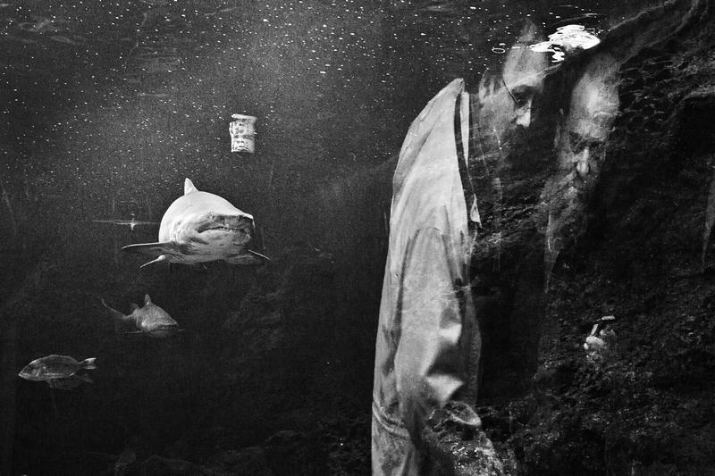 © Spiros Zervoudakis
