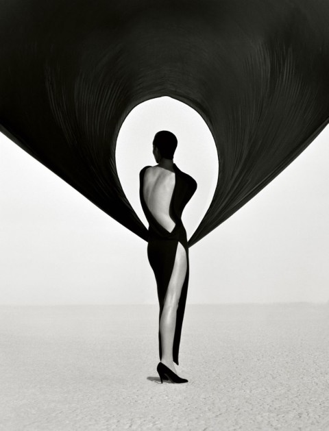 Biography: Fashion/Portrait photographer Herb Ritts