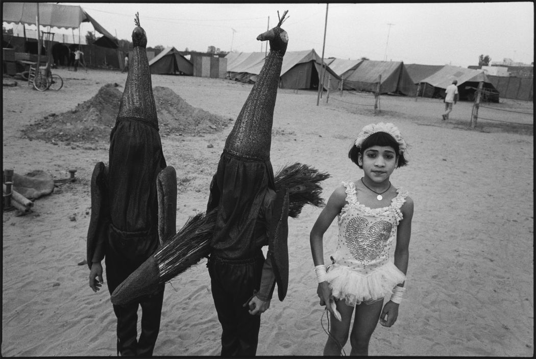 the life and works of mary ellen mark