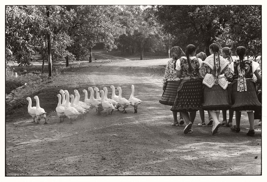 HUNGARY. 1964.