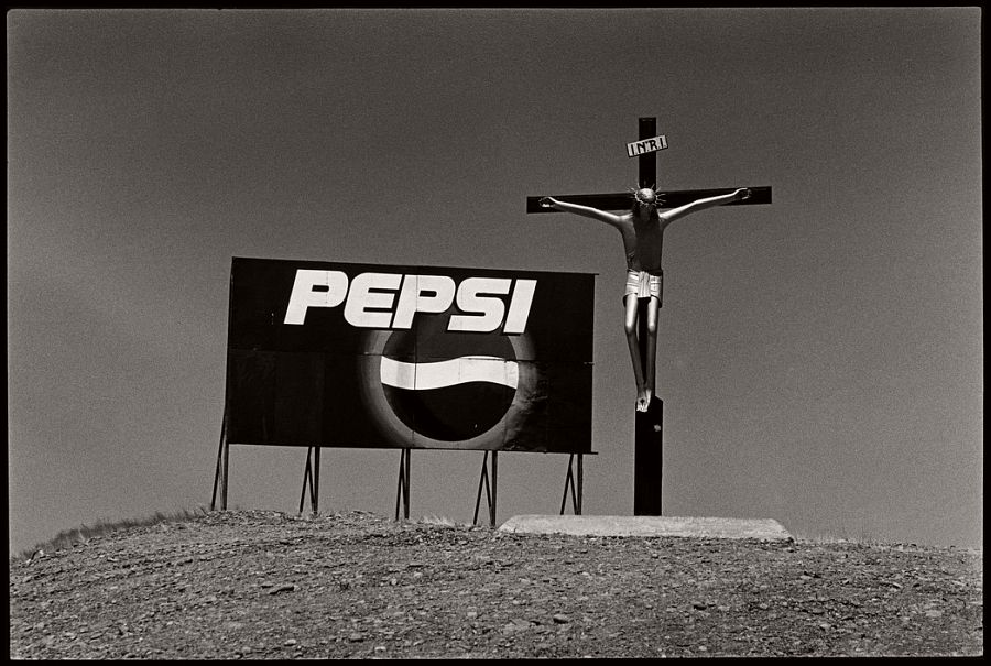ARGENTINA. Valdes Peninsula. 2001.