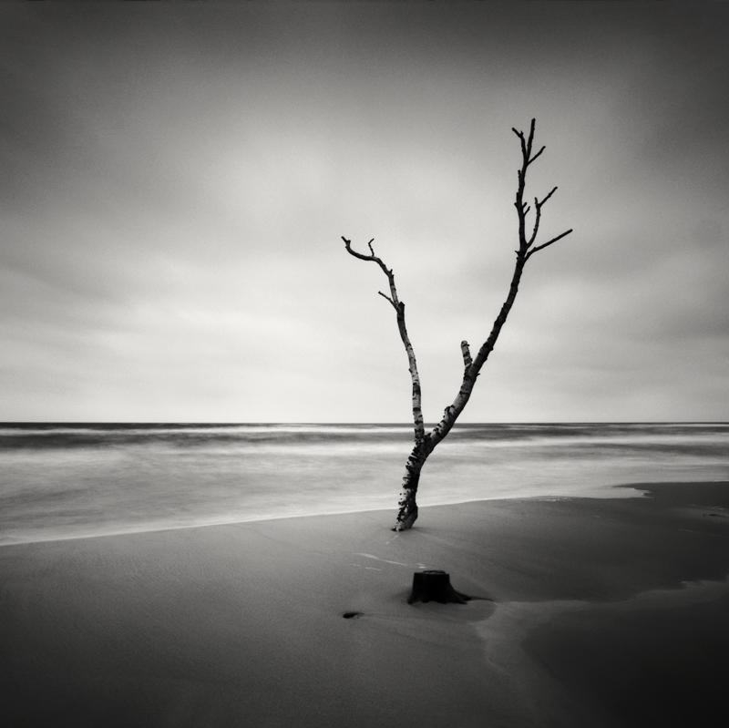 hakan-strand-6