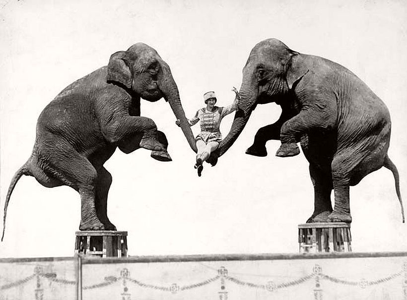 circus-life-photographer-harry-a-atwell-05