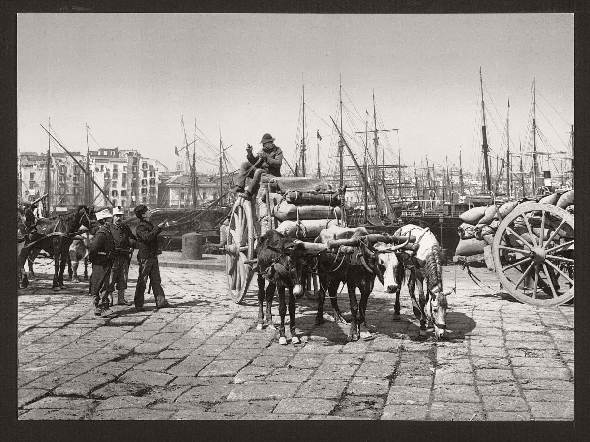 Historic b w photos of naples italy 19th century for Italy b b