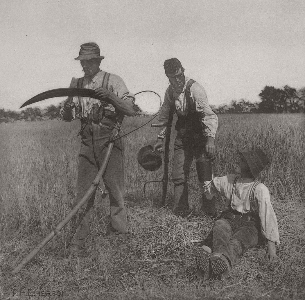 pictorial-rural-life-photographer-peter-henry-emerson-13