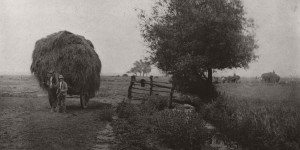 Biography: Pictorial Rural Life photographer Peter Henry Emerson