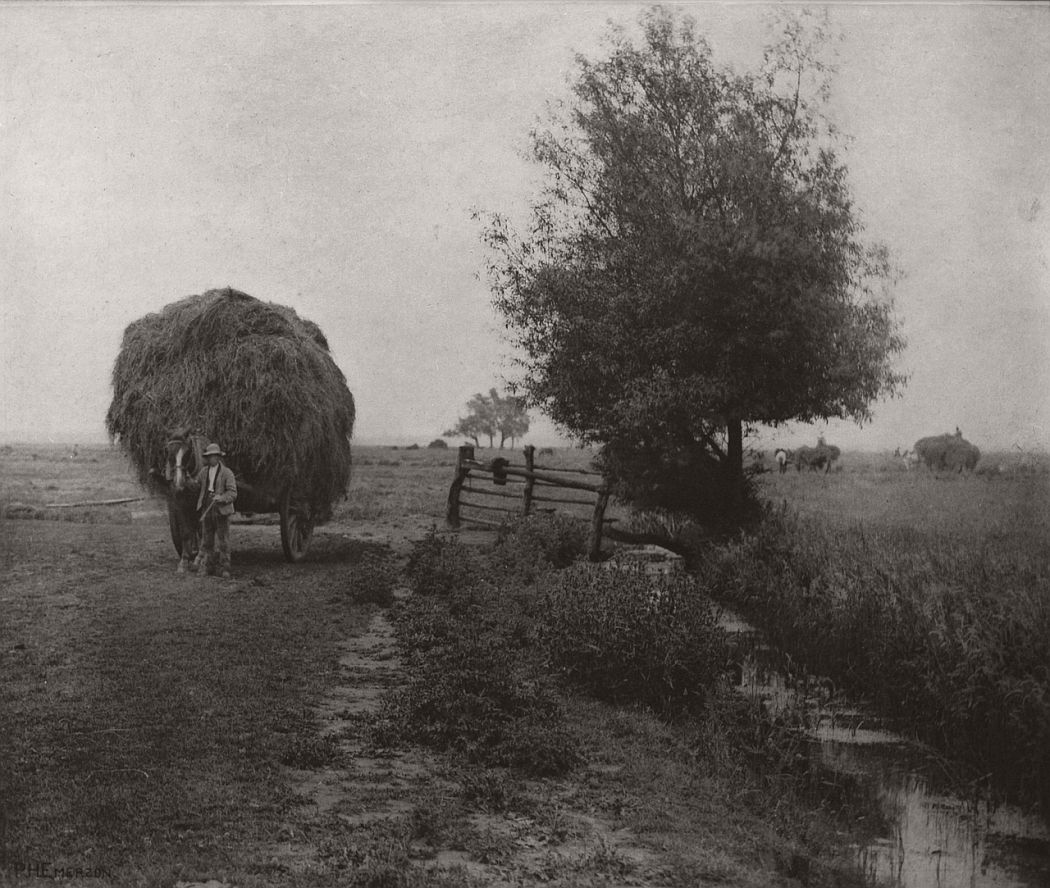 pictorial-rural-life-photographer-peter-henry-emerson-14