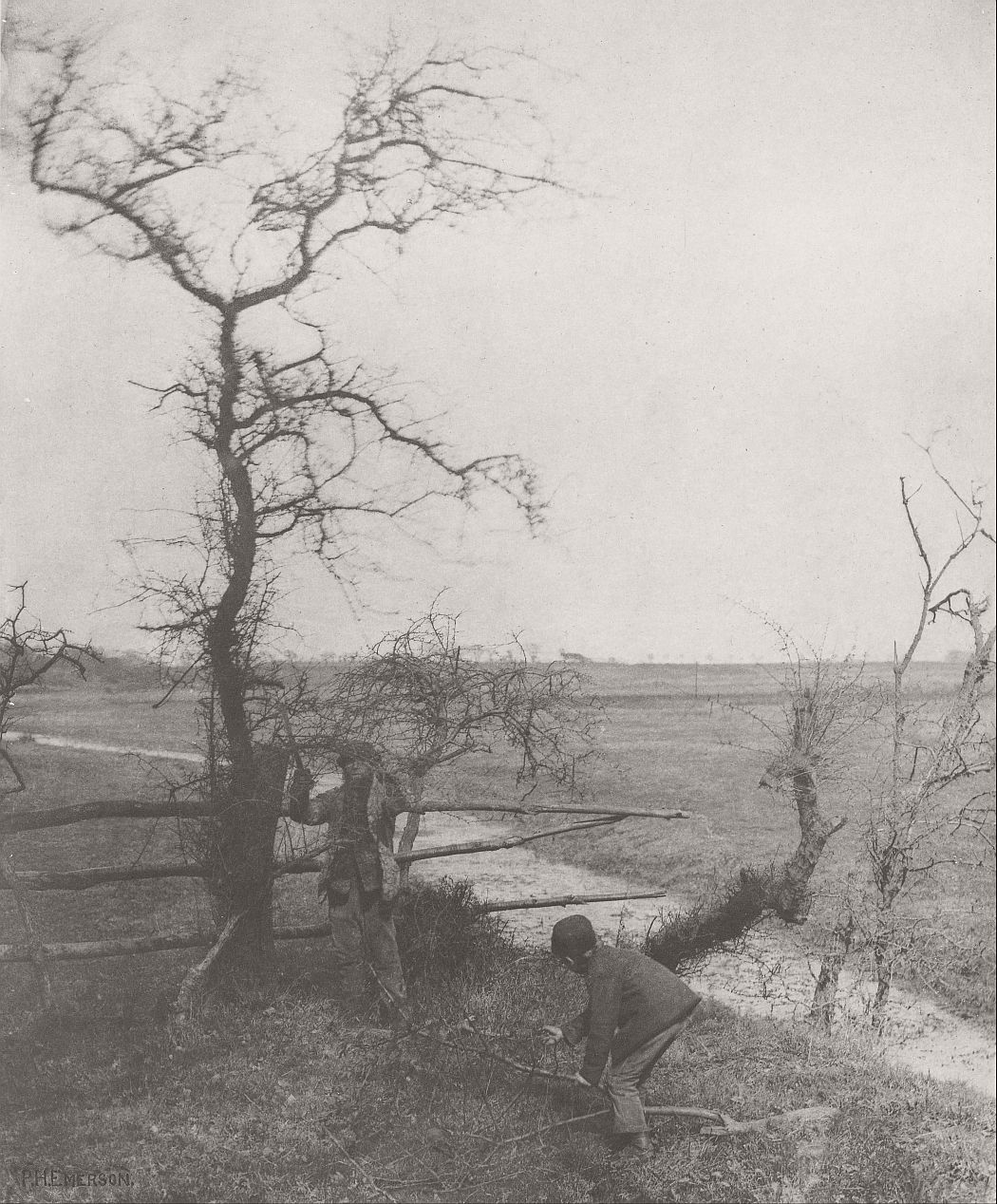 pictorial-rural-life-photographer-peter-henry-emerson-17