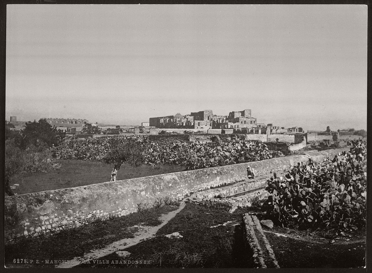 vintage-bw-photos-of-tunis-tunisia-late-19th-century-06