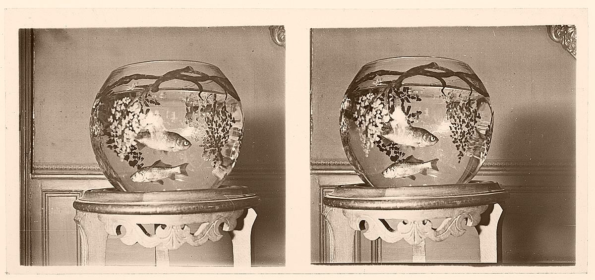 vintage-glass-stereographs-from-france-1920s-08