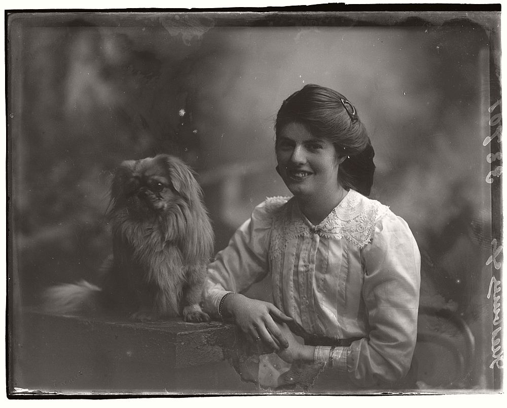 vintage-glass-wet-plate-collodion-portraits-of-pets-1910s-01