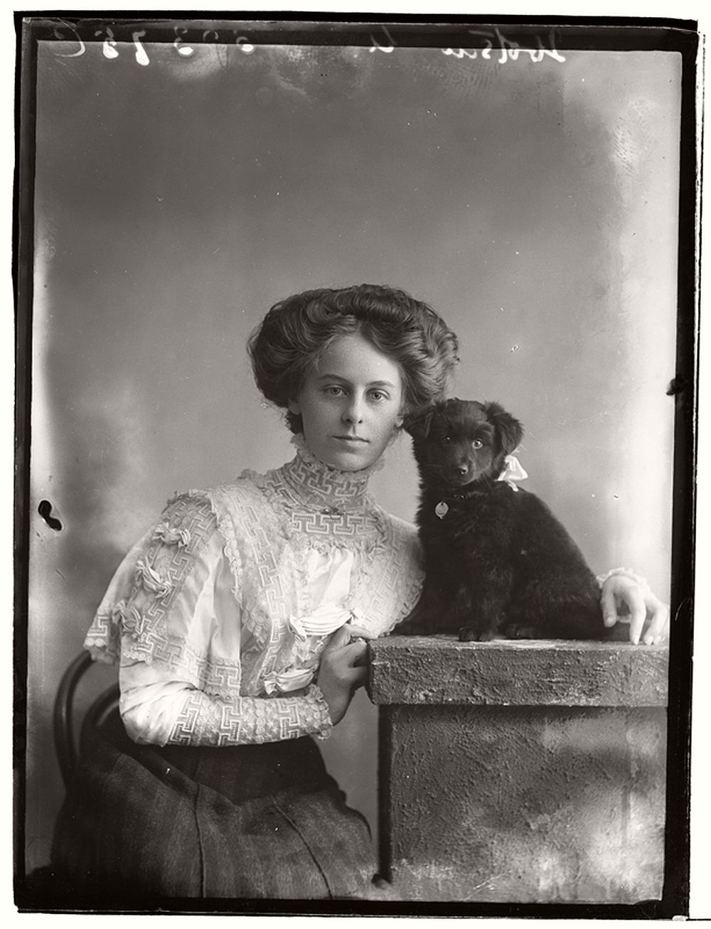 vintage-glass-wet-plate-collodion-portraits-of-pets-1910s-09