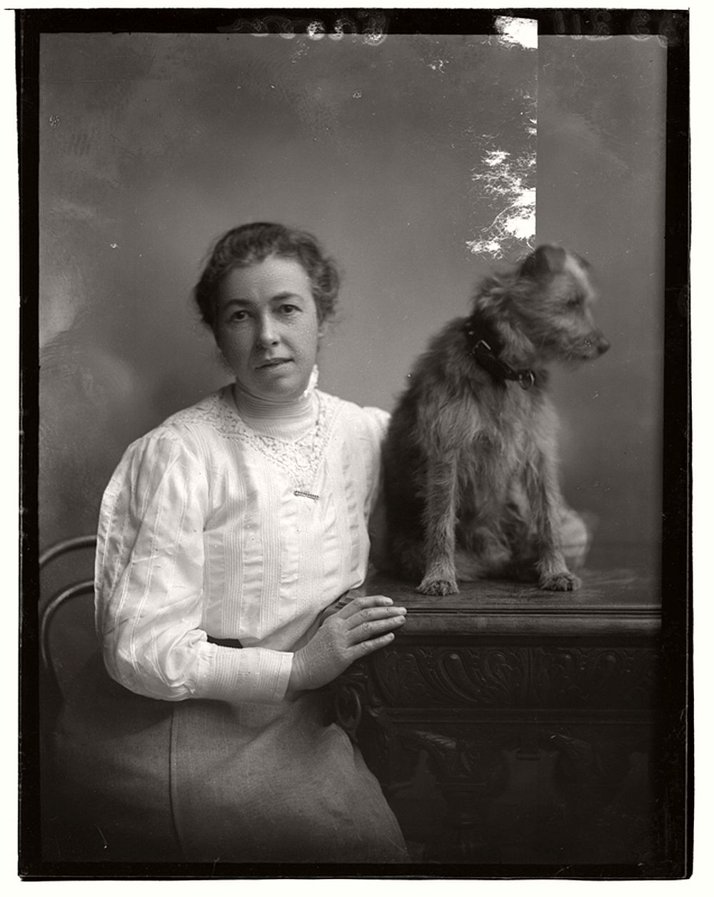 vintage-glass-wet-plate-collodion-portraits-of-pets-1910s-13