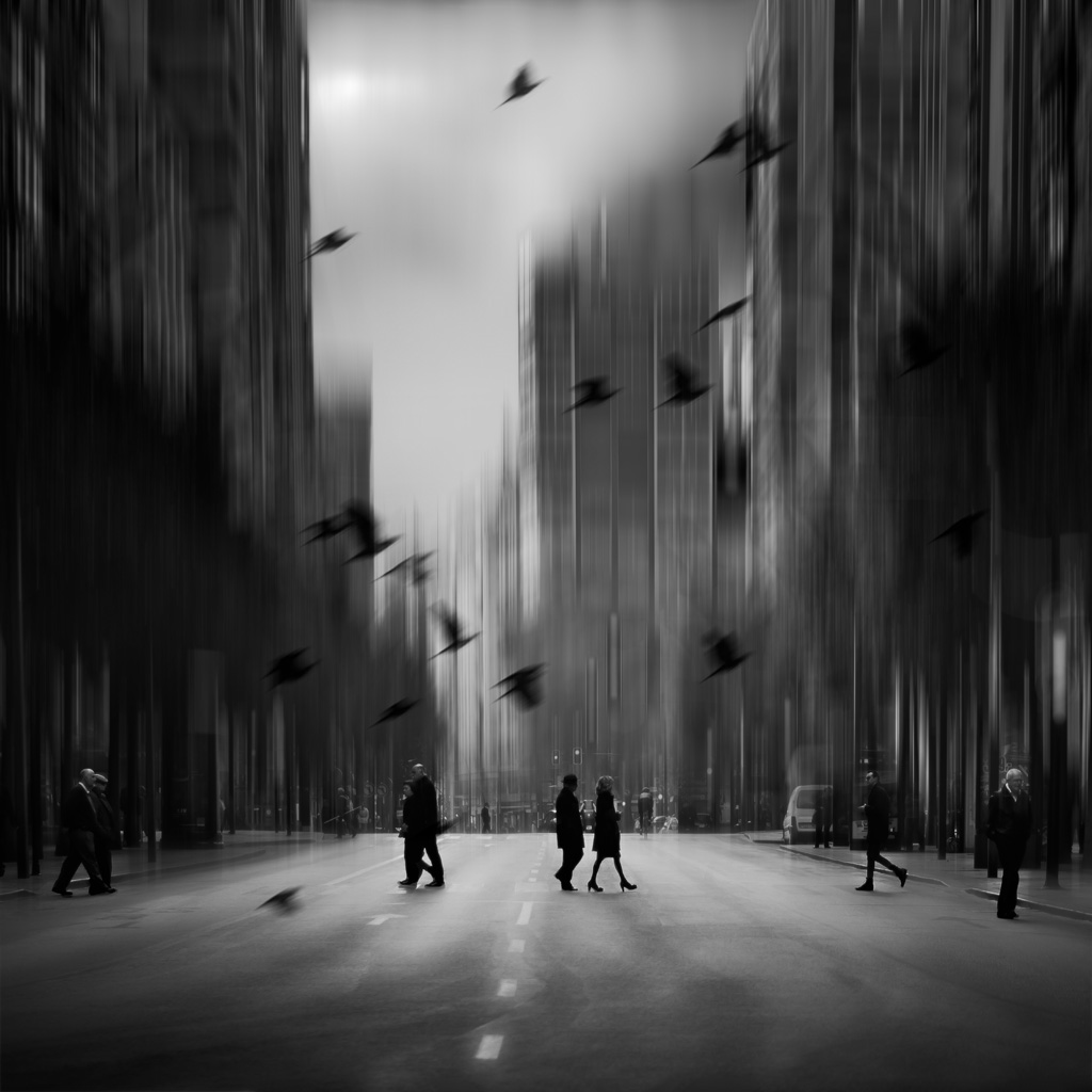 FINE ART: PHOTOMANIPULATION - 1st - GOLD STAR AWARD Mariano Belmar Torrecilla (Spain)