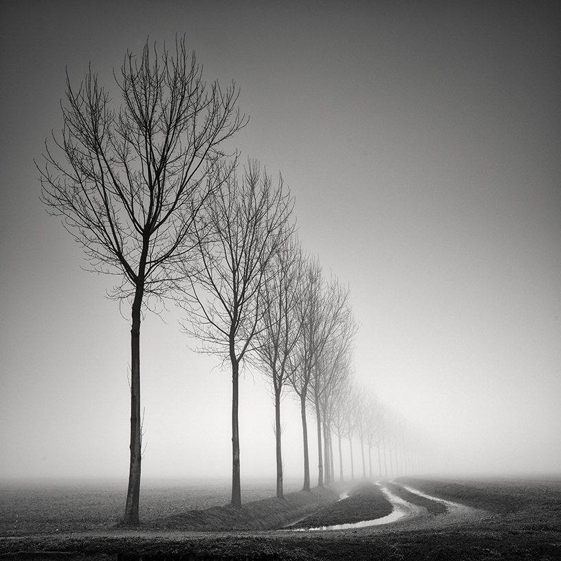 Pierre Pellegrini (Switzerland)