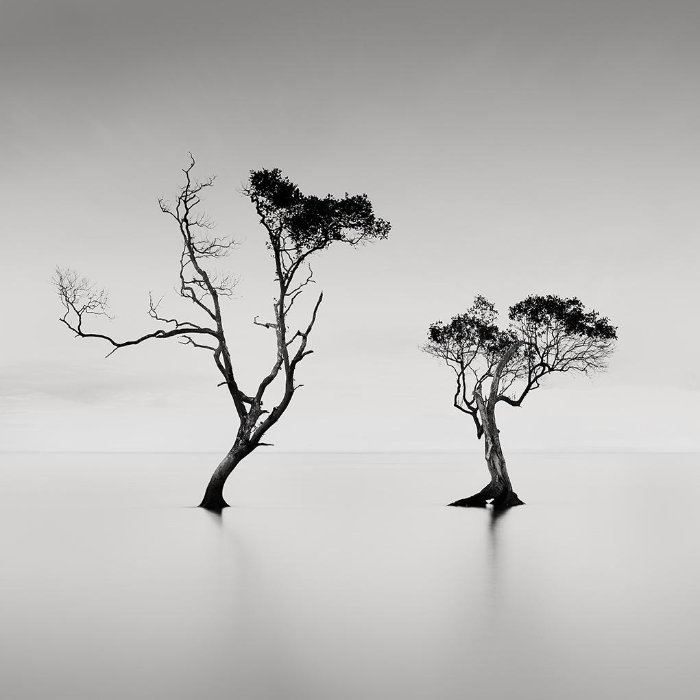 Steven Fudge (Australia)