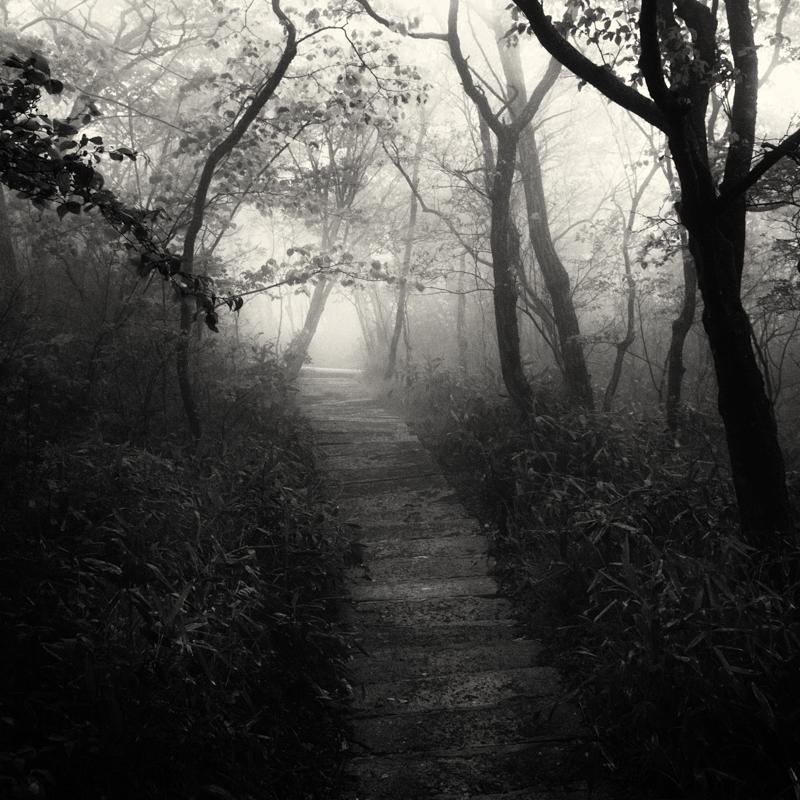 linus-bergman-fine-art-photographer-12