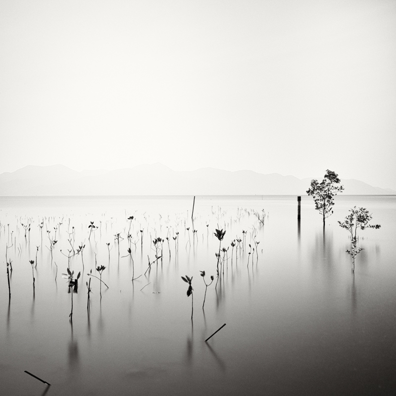 linus-bergman-fine-art-photographer-13