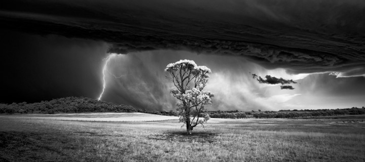 Monochrome photography awards 2015 winners gallery