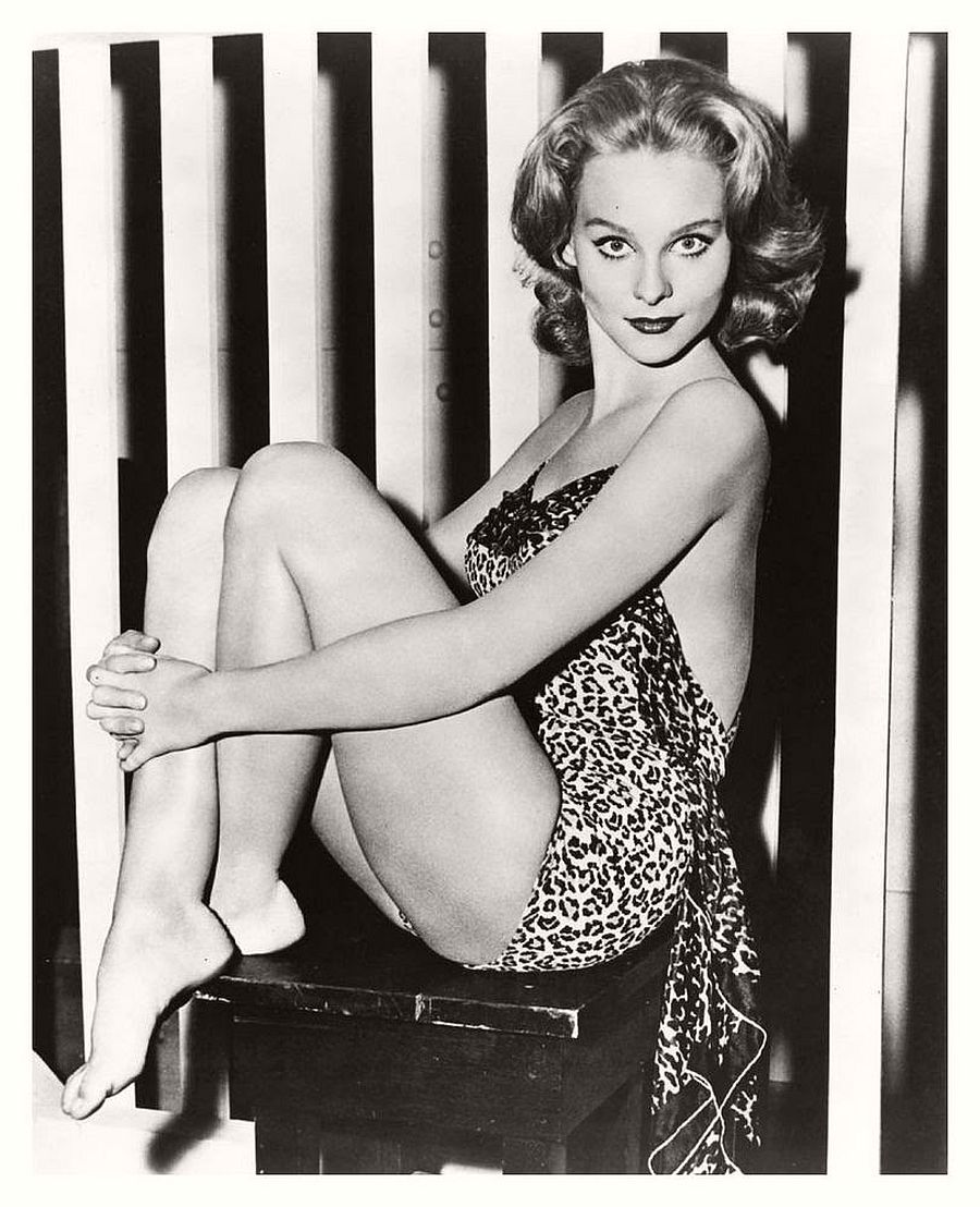 Diane McBain-hollywood-actresses-top-20-hottest-1960s-in-bw