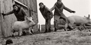 Vintage: The Kim Sisters (1960)