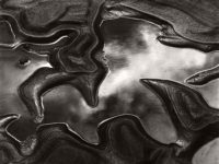 Brett Weston: Significant Details