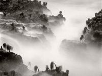 Wynn Bullock: Revelations