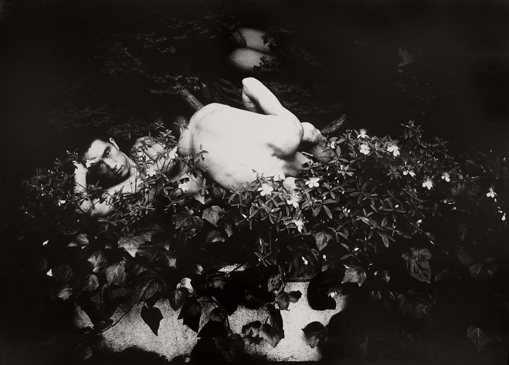 eikoh-hosoe-revisitations-to-a-vacuums-nest-08