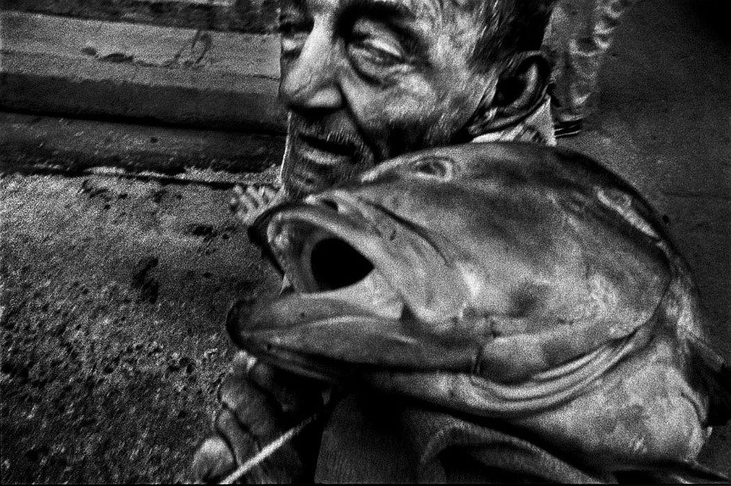 ernesto-bazan-cuban-trilogy-01
