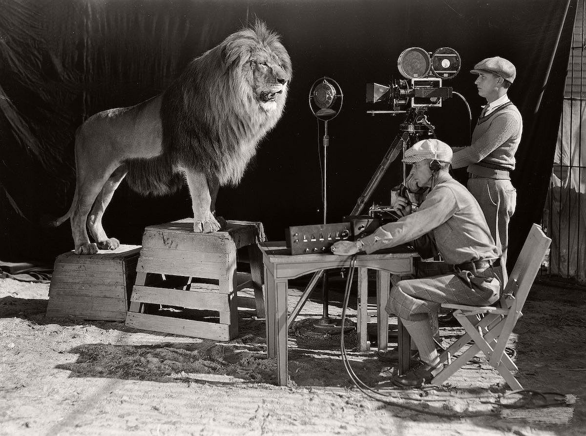 vintage-recording-the-mgm-lion-1920s-01