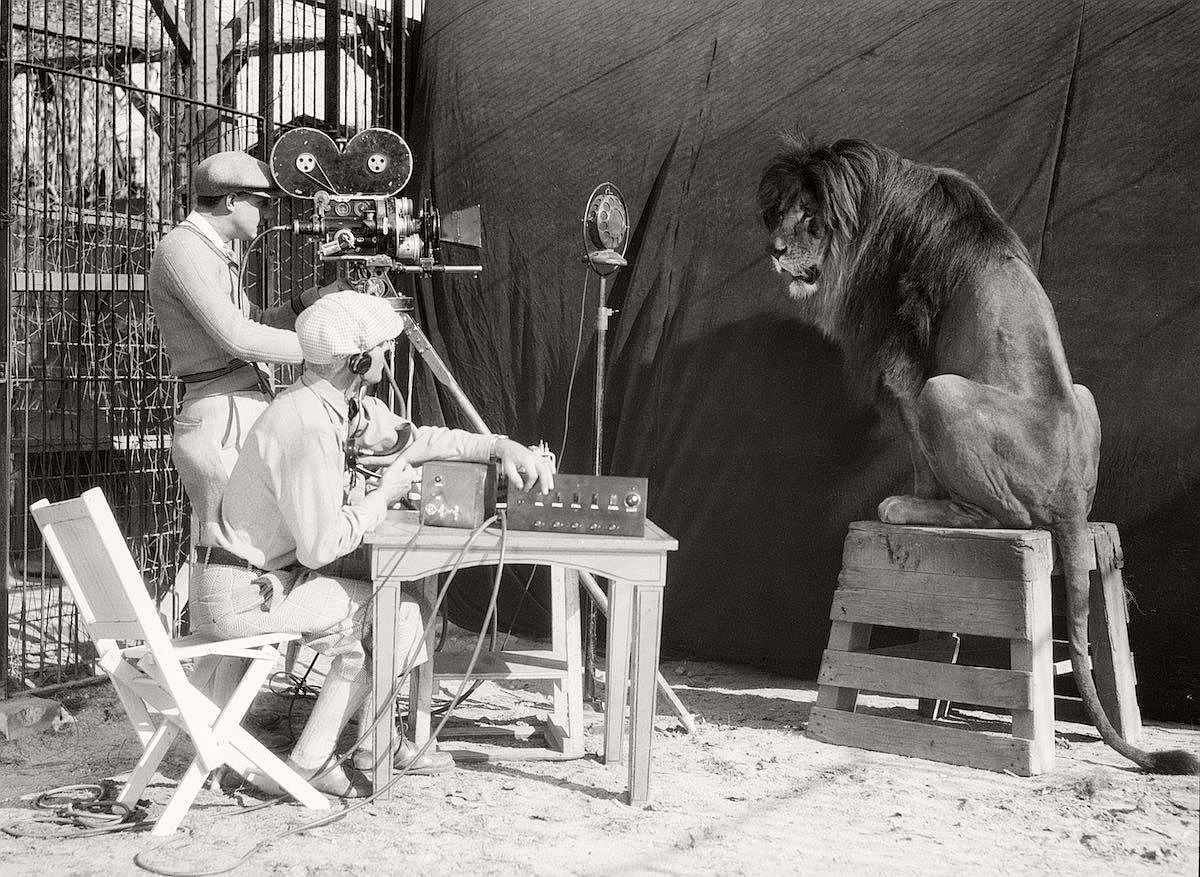 vintage-recording-the-mgm-lion-1920s-02