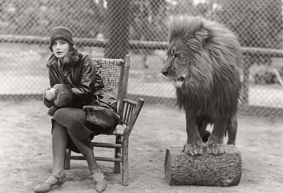 vintage-recording-the-mgm-lion-1920s-04