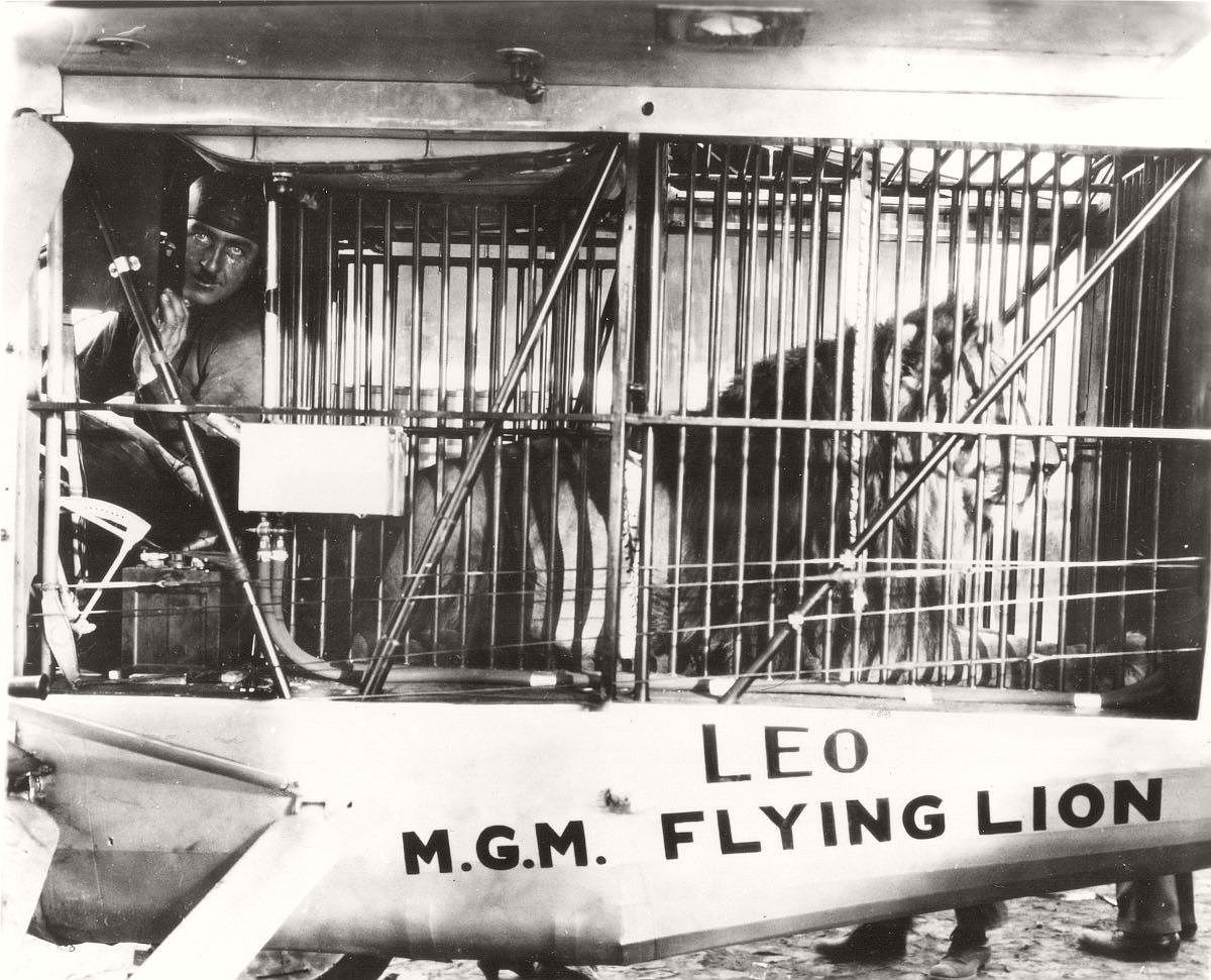 vintage-recording-the-mgm-lion-1920s-11