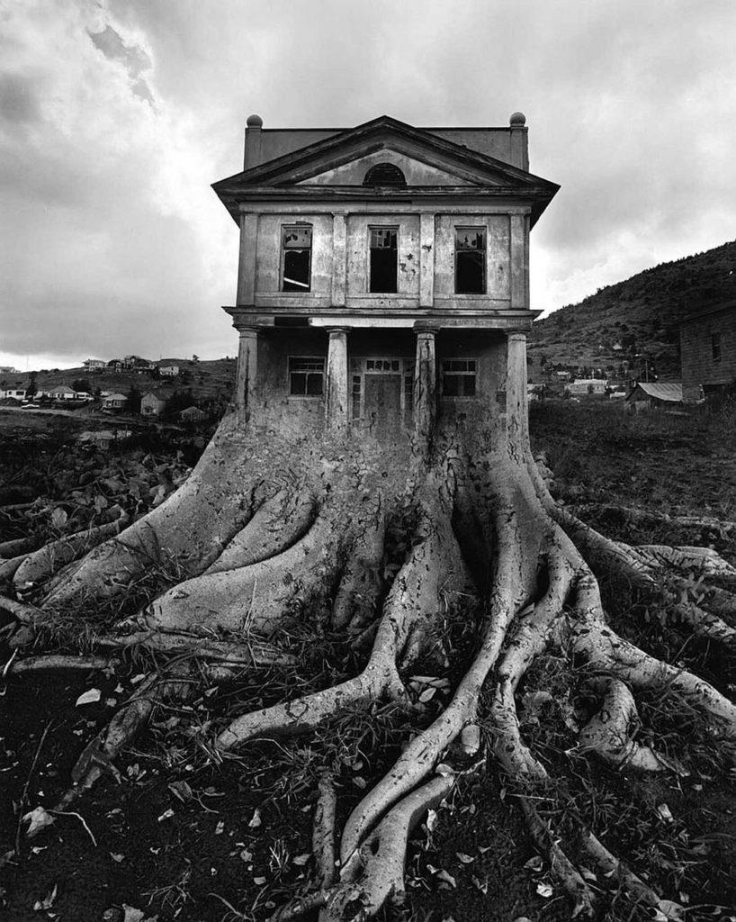 jerry uelsmann Coup de cœur pour les séries et le travail du photographe américain jerry uelsmann, particulièrement reconnu pour ses montages photographiquesdes créations surréalistes conçues sans l'aide de logiciels de retouche dont l'ensemble est à découvrir en images dans la suite de l'article.