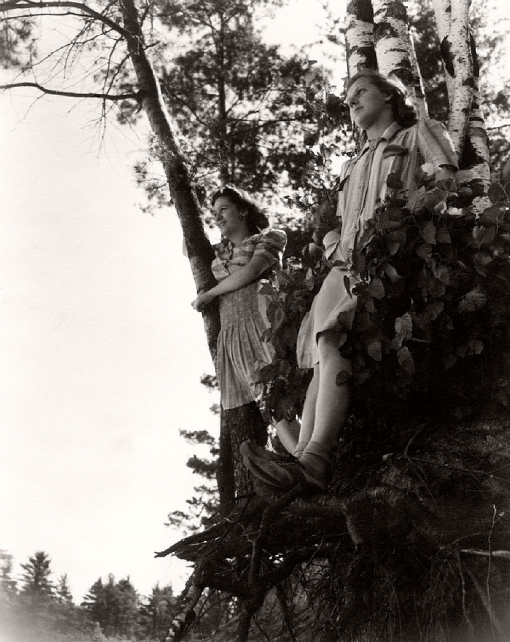 women-in-trees-hatje-cantz-06