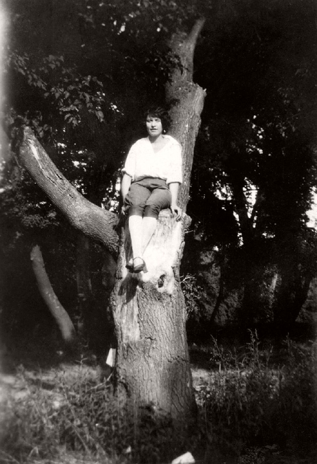 women-in-trees-hatje-cantz-07