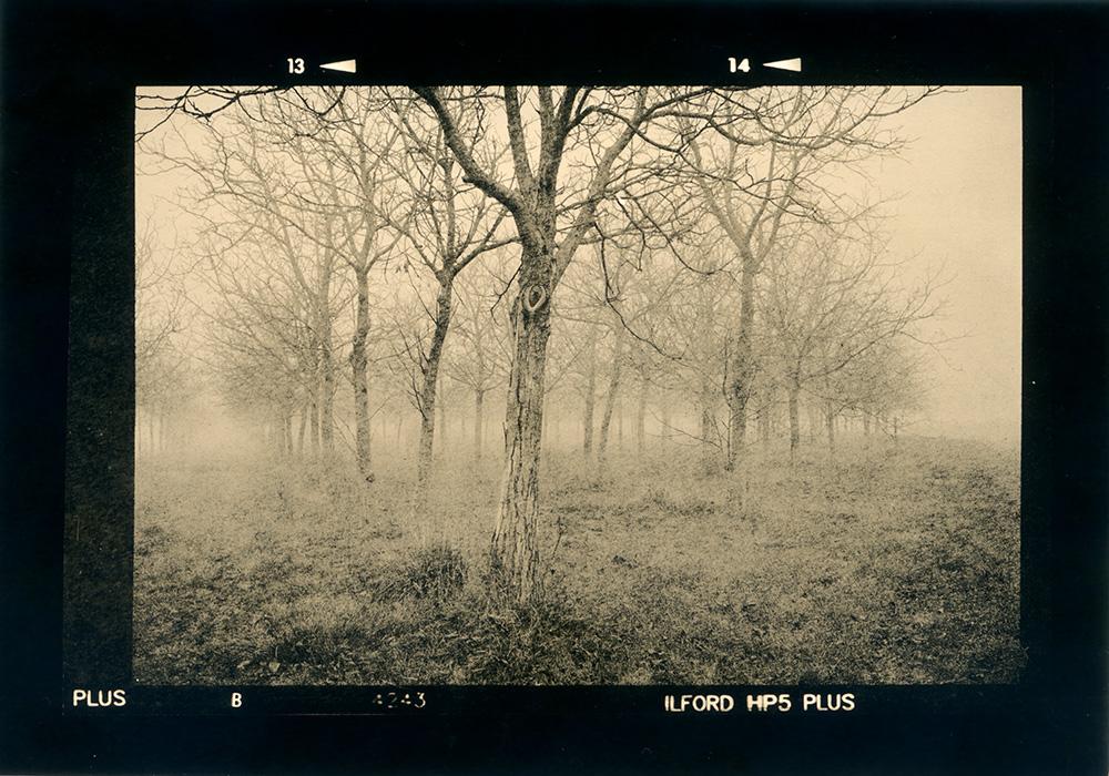 ludovico-poggioli-landscape-photographer-08