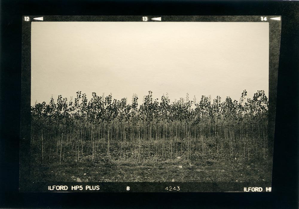 ludovico-poggioli-landscape-photographer-09