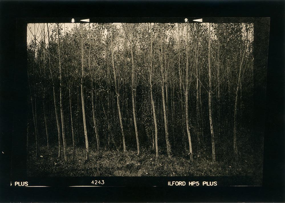 ludovico-poggioli-landscape-photographer-17