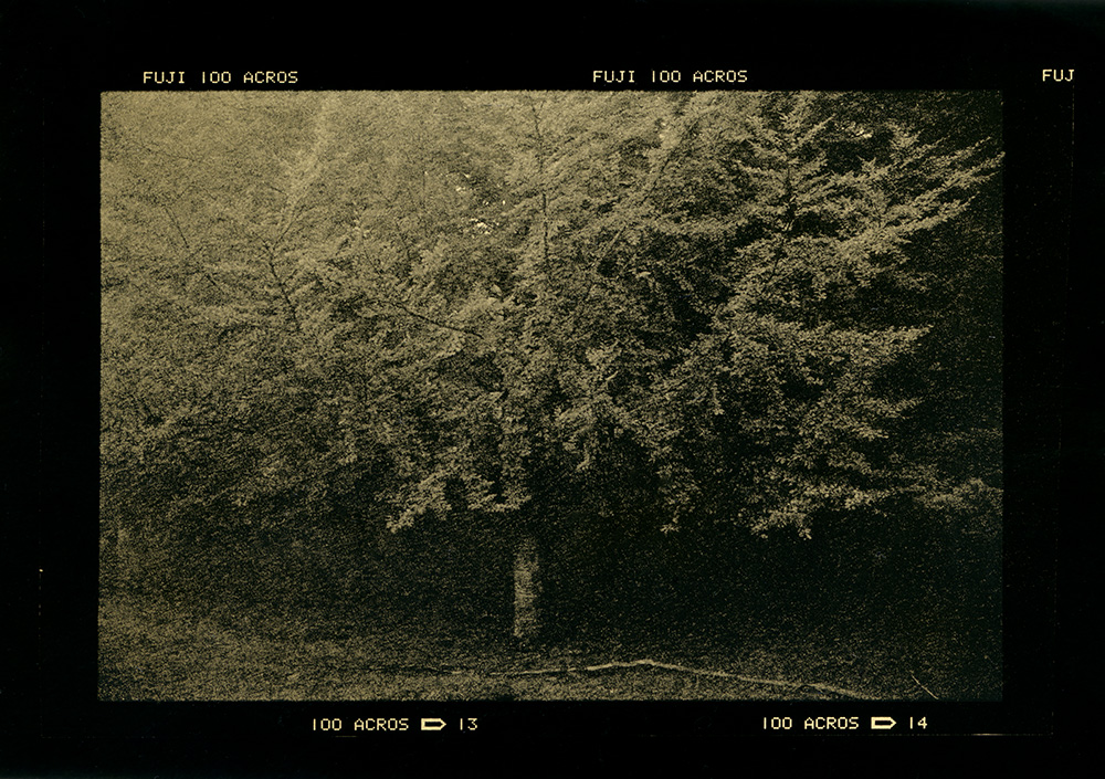 ludovico-poggioli-landscape-photographer-20